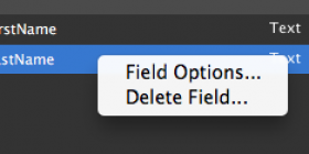 Field Options in FileMaker 13