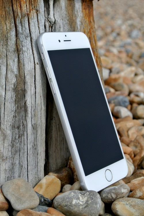 iPHone 6 leaning against a tree