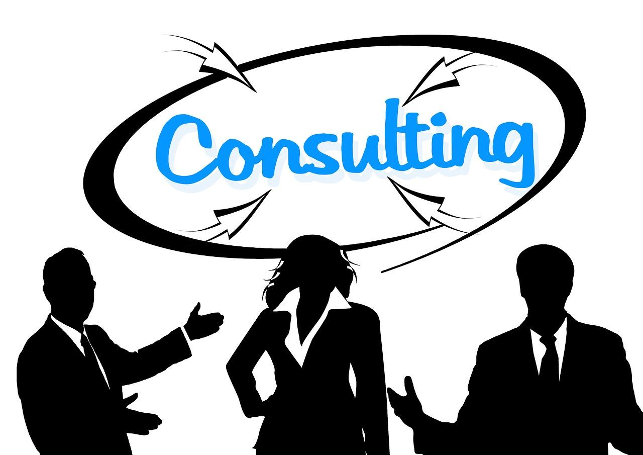 FileMaker Developer vs Consultant